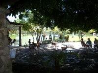 Cafetería Parque Josone