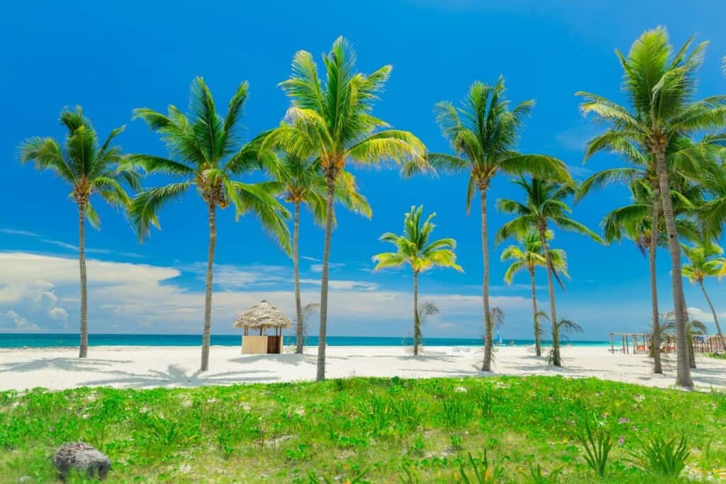 ofertas en hoteles gaviota en cayo coco