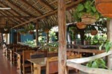 Vista del Restaurante Las Palmeras